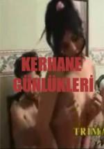 Türk sex film